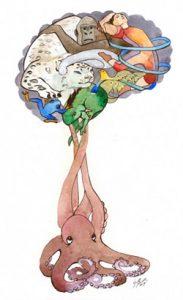 Brain Forest, neurological mysteries