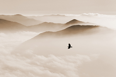 Mindfulness Spirituality