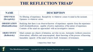 Reflection Triad Consciousness