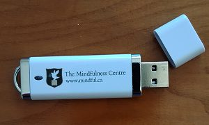 USB Stress Reduction through Dynamic Mindfulness